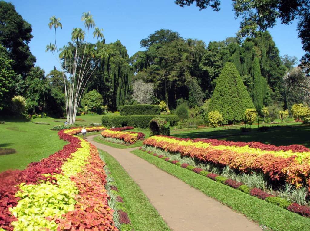 jardin botanique sir lanka