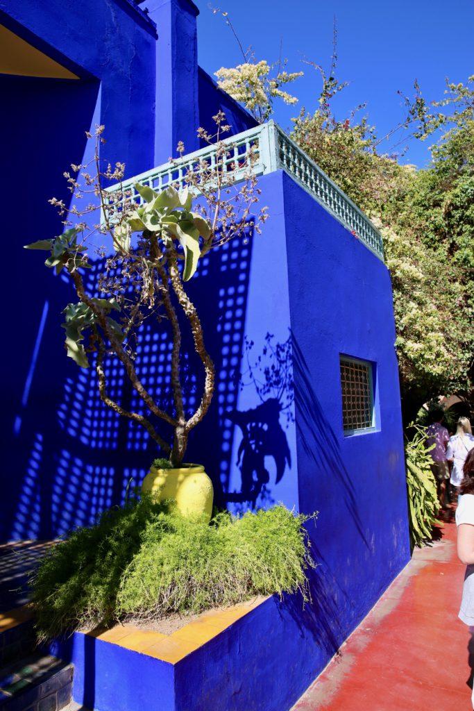 jardin Yves Saint Laurent marrakech